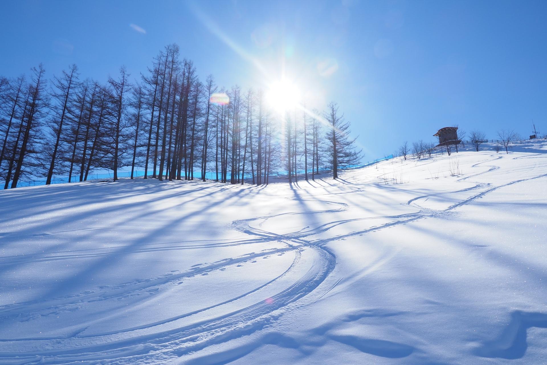 スキーターンは重心の位置がポイント!練習を重ねて感覚を掴もう